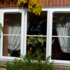 Guide to Double Glazing Costs Online